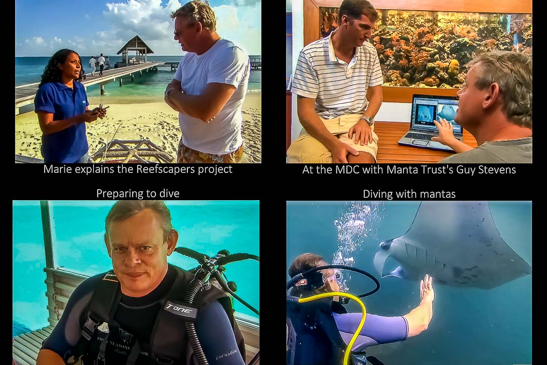 """Martin Clunes visits our Marine Discovery Centre for the """"Man To Manta"""" TV show"""