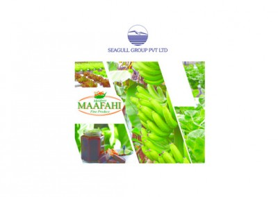 Environmental Impact Assessment – Maafahi