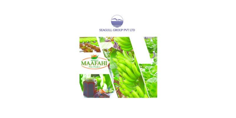 Environmental Impact Assessment – Maafahi