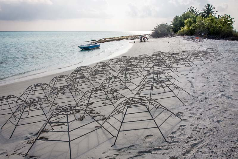 new Reefscapers coral frames awaiting transplantation, Innafushi