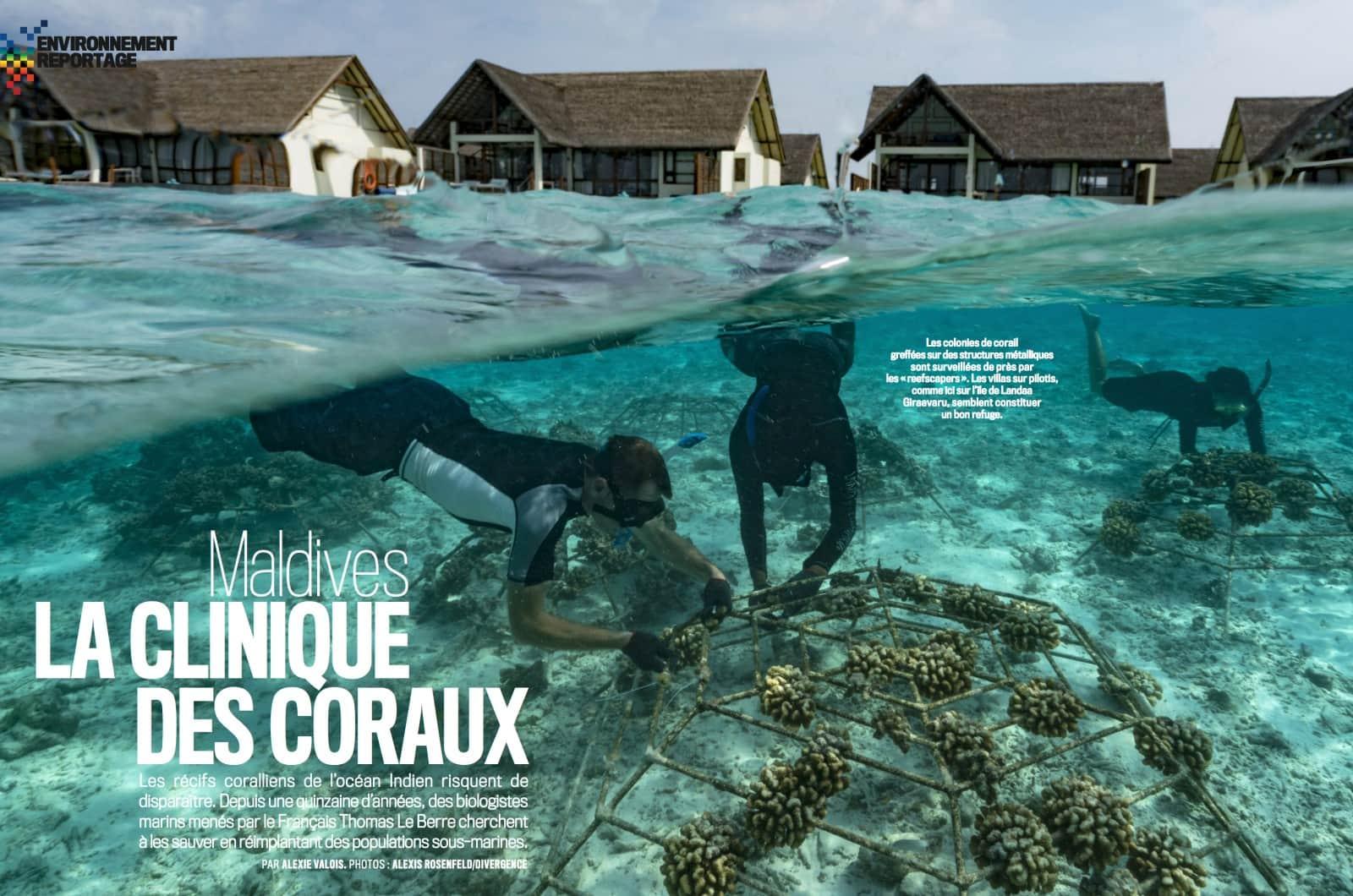 La Clinique des coraux