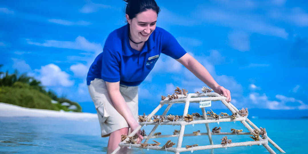 Reefscapers coral adoption and coral reef sponsorship Maldives