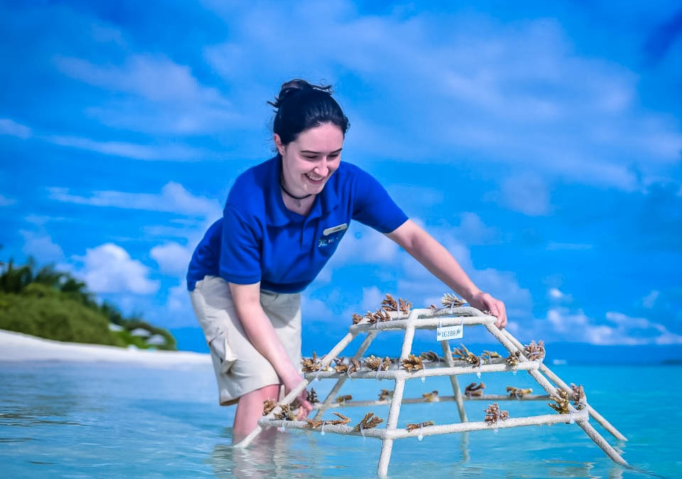 """Our Ongoing """"Marine Savers"""" Work with Four Seasons"""
