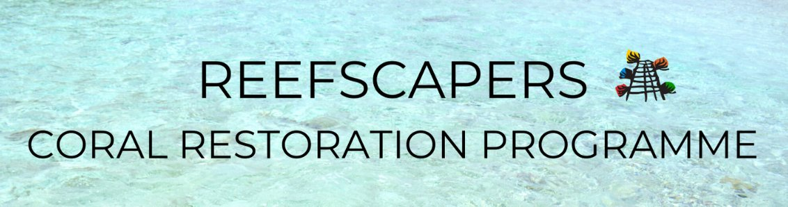 Reefscapers adopt corals Maldives
