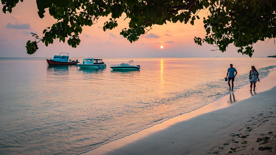 Reefscapers coral reef propagation Fulhadhoo Maldives sunset