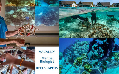 Reefscapers Vacancy for a Marine Biologist