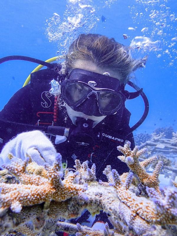 Reefscapers women in science - Amelie
