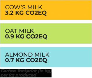Plant milks v dairy